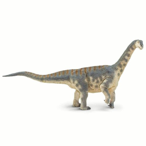 Safari Ltd®  Camarasaurus Toy Figurines Perspective: front