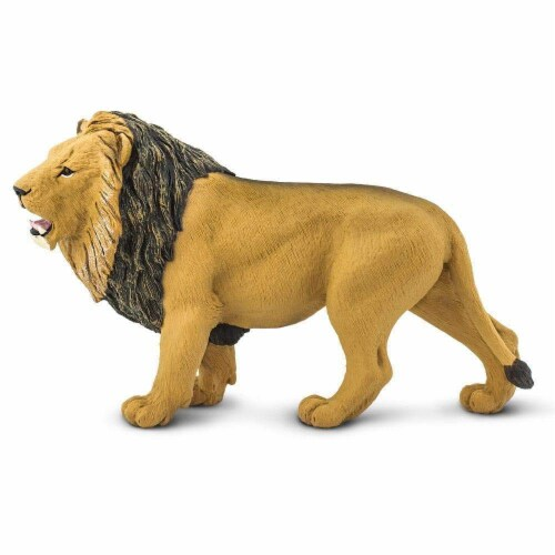 Lion Toy Perspective: front
