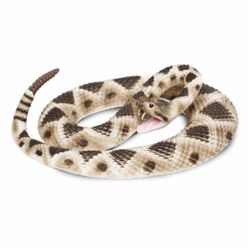 Eastern Diamondback Rattlesnake Perspective: front