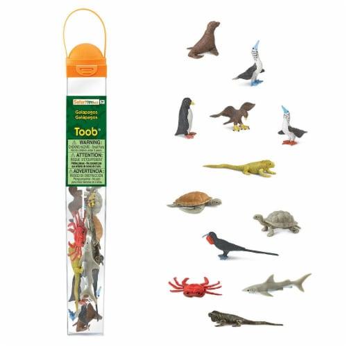 Safari Ltd®  Galapagos Perspective: front