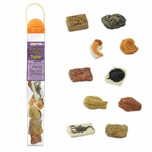 Safari Ltd®  Ancient Fossils Perspective: front