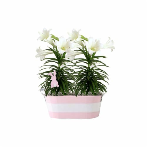Double Lily Easter Bucket Perspective: front