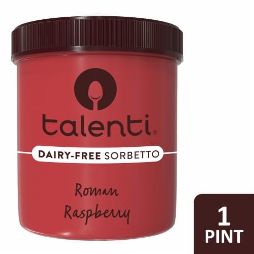 Talenti Roman Raspberry Dairy-Free Sorbetto Ice Cream Perspective: front