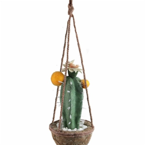 Northlight 32734091 8 in. Green & Orange Southwestern Style Hanging Potted Decorative Cactus Perspective: front