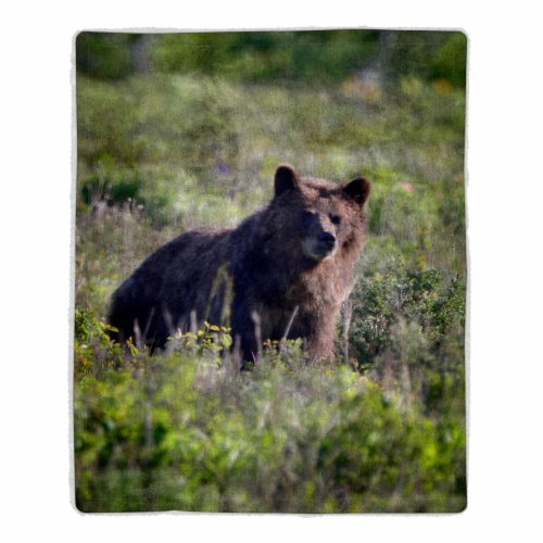 Fluffy Plush Throw Blanket 50 x 60 Inch- Grizzly Bear Print Lightweight Hypoallergenic Bed or Perspective: front