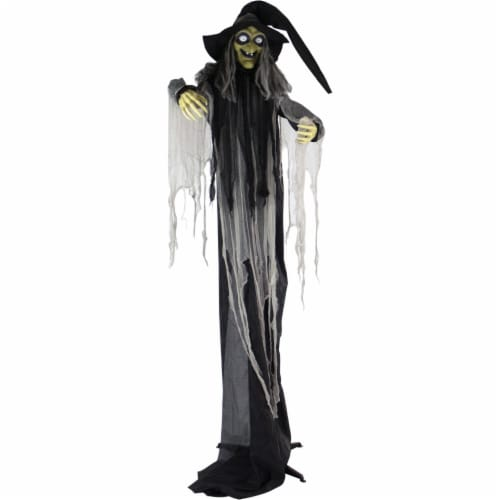 Haunted Hill Farm Animatronic Witch Indoor/Outdoor Halloween Decoration Perspective: front