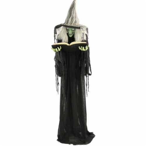 Haunted Hill Farm Animatronic Witch Halloween Decoration Perspective: front