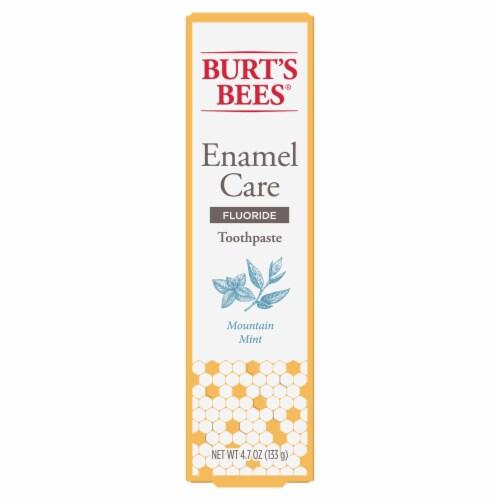 Burt's Bees Mountain Mint Enamel Care Flouride Toothpaste Perspective: front