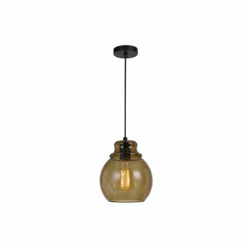 Saltoro Sherpi Round Glass Shade Pendant Lighting with Canopy and Hardwired Switch, Brown Perspective: front