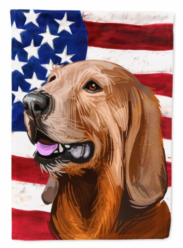 Segugio Italiano Dog American Flag Flag Canvas House Size Perspective: front