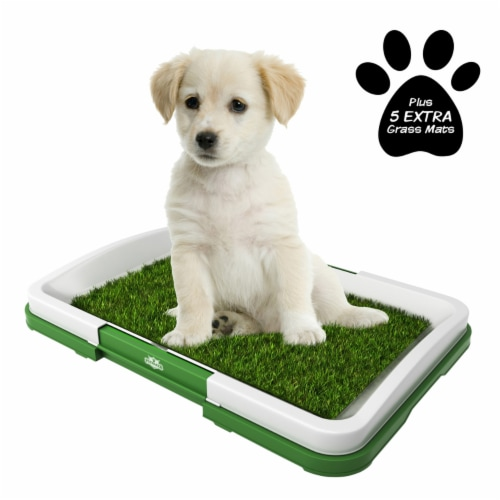 Puppy Potty Trainer- Artificial Grass Mat, Tray & 5 Extra Replacement Turf Pads Perspective: front
