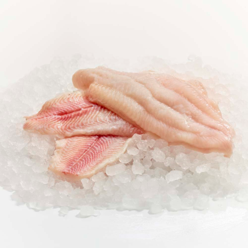 Wild Caught Pike Walleye Fillet Perspective: front