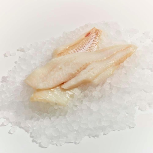 Wild Caught Cod Fillets Perspective: front