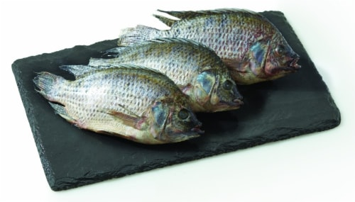 Tilapia Whole (Farm Raised Previously Frozen) (Service Counter) Perspective: front