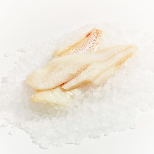 Fresh Pacific Cod Fillet (Service Case) Perspective: front