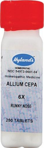 Hyland's  Allium Cepa 6x Perspective: front