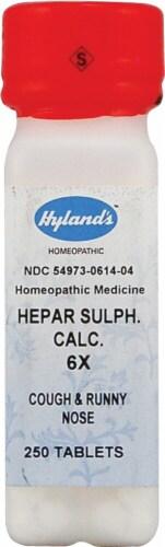 Hyland's  Calcium Hepar Sulphate 6x Perspective: front
