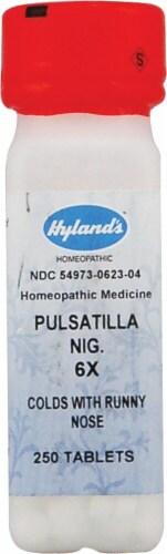 Hyland's  Pulsatilla Nig 6x Perspective: front