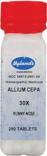 Hyland's  Allium Cepa 30x Perspective: front