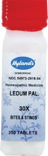 Hyland's  Ledum Pal 30x Perspective: front