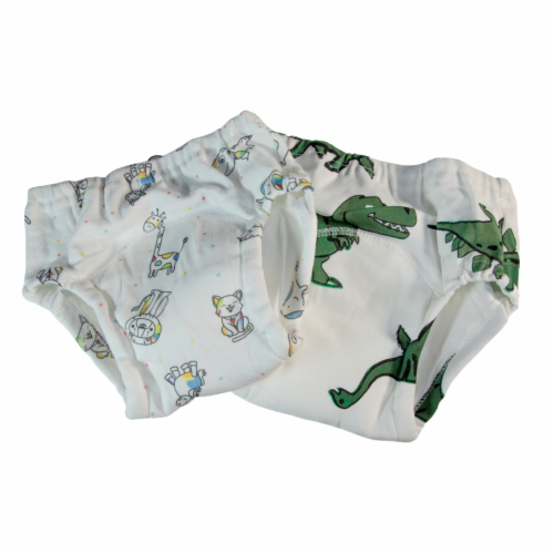 Toddler Training Potty Underwear (Pack of 2, 3T) Perspective: front