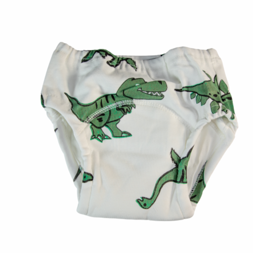 Toddler Training Potty Underwear (Dinosaur, 4T) Perspective: front