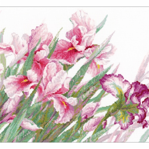 Riolis R100-024 17.75 x 13.75 in. Irises Counted Cross Stitch Kit - 14 Count Perspective: front