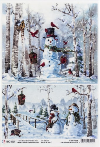 Ciao Bella Rice Paper Sheet A4 5/Pkg-Cards, Northern Lights Perspective: front
