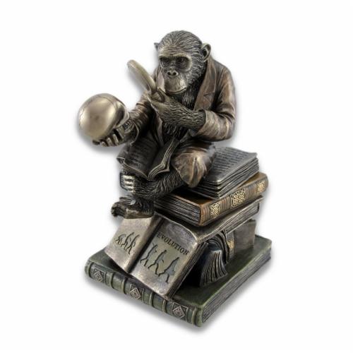 Smart Chimpanzee Scholar Trinket Box Stash Box Perspective: front