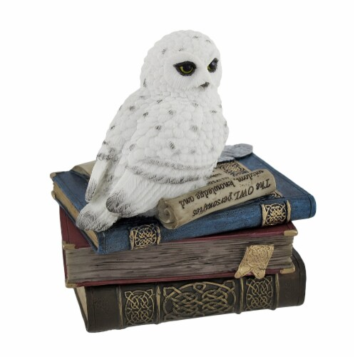 Wise Snow Owl Resting on Scholar`s Books Trinket Box Perspective: front