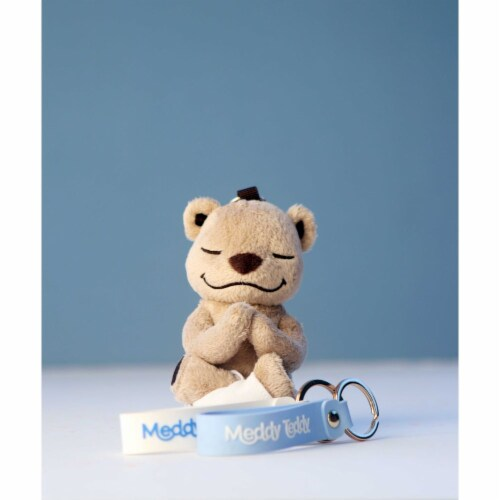 Meddy Teddy Keychain Perspective: front