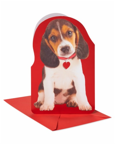 American Greetings #56 Valentine's Day Card (Puppy) Perspective: front