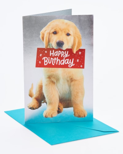 American Greetings #30 Birthday Card (Puppy) Perspective: front