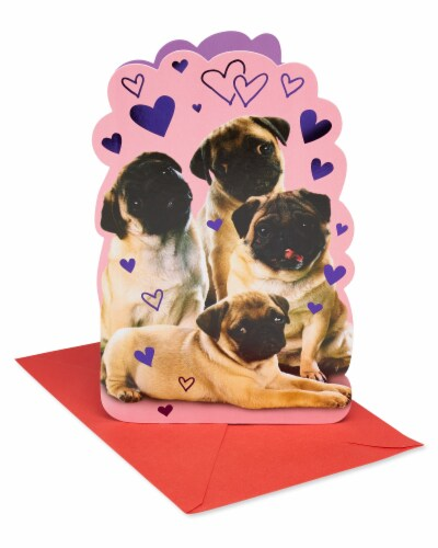 American Greetings Valentine's Day Card (Pugs) Perspective: front