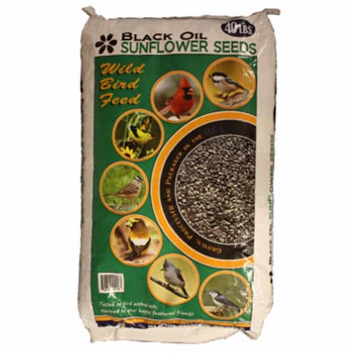 Jrk Seed & Turf Supply B200040 40 lbs. Black Sunflower Food Perspective: front