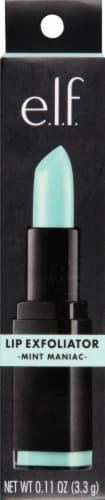 e.l.f. Mint Maniac Lip Exfoliator Perspective: front