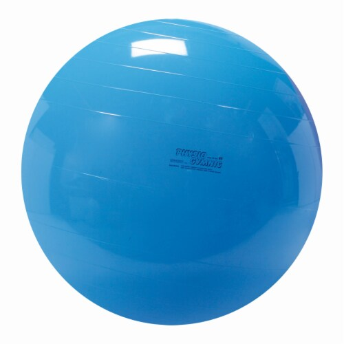 Gymnic Physio Fitness Ball - Blue Perspective: front