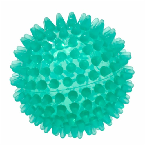 Gymnic Reflex Hedgehog Ball Perspective: front