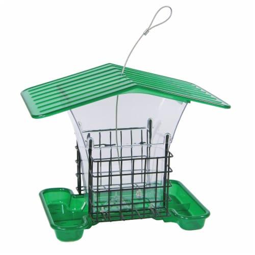 Belle Fleur Green/Clear Hopper Bird Feeder with Suet Holders Perspective: front