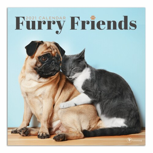 2021 Furry Friends Wall Calendar by TF Publishing Perspective: front