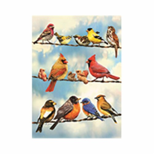 Outset Media Games OM58888 Blue Sky Birds Puzzle Tray, 35 Piece Perspective: front