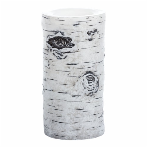 Sterno Home Flameless LED Birch Pillar Candle  - White Perspective: front
