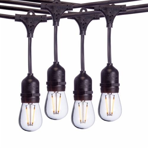 Sterno Home Commercial Dimmable Outdoor LED Edison Bulb String Lights Perspective: front