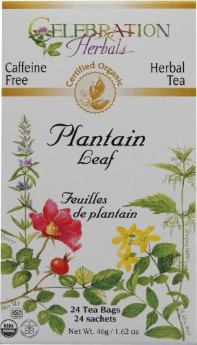 Celebration Herbals  Organic Plantain Leaf Tea Caffeine Free Perspective: front