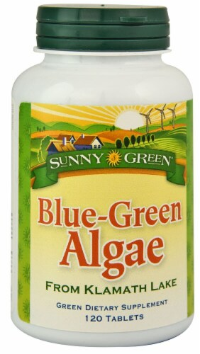 Sunny Green  Blue Green Algae Perspective: front