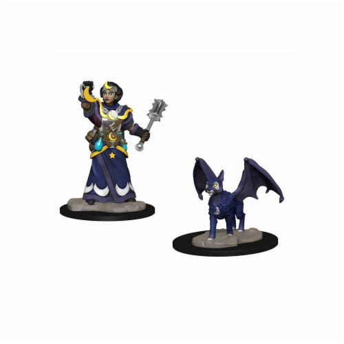 WizKids WZK73313 Girl Cleric & Winged Cat WizKids Miniatures Pre-Painted Minis Wardlings Perspective: front