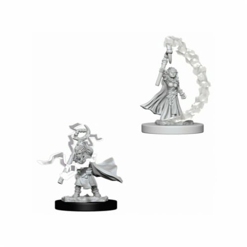 WizKids WZK73345 Pathfinder Deep Cuts Gnome Female Sorcerer W5 Miniature Perspective: front