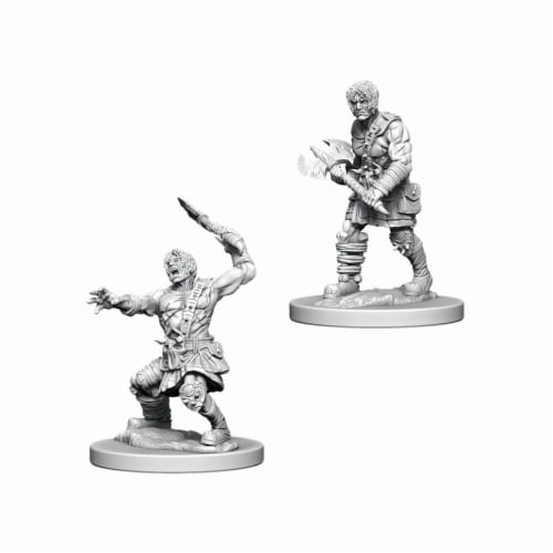 WizKids  Nameless One W6 Dungeons & Dragons Nolzurs Marvelous Miniatures Perspective: front