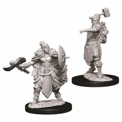 WizKids Dungeons & Dragons Nolzurs Marvelous Female Half Orc Barbarian W9 Miniature Perspective: front