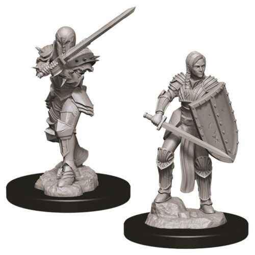 WizKids WZK73705 Dungeons & Dragons Nolzurs Marvelous Female Human Fighter W9 Miniature Perspective: front